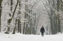 Antwerpse heirweg in de sneeuw