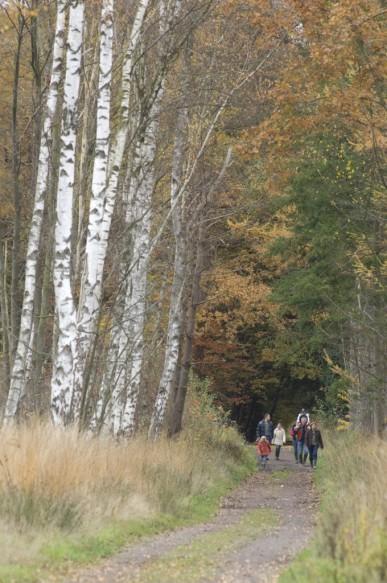 Wandelaars in de natuur.
