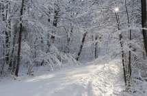 Het Leen in de sneeuw.