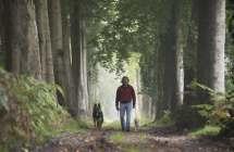 Wandelaar met hond in het bos.