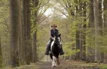 Te paard in het bos.