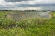 Natuur in de omgeving van de Waaslandhaven.