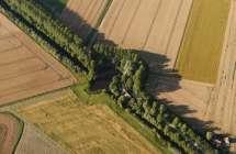 Dijk in de polder.