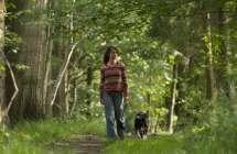 Wandelen met hond in het bos.