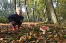 Kind bewondert paddestoel