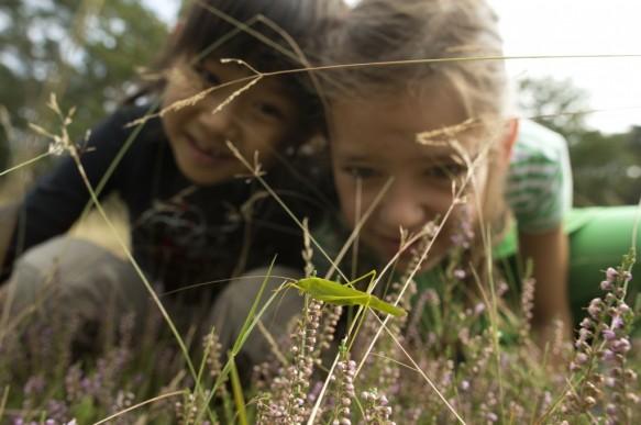 Kinderen in de natuur.