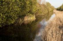 Zwarte Sluisbeek