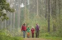 Wandelaars in het bos.