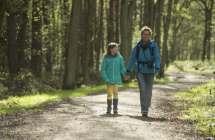 Wandelen in het Stropersbos