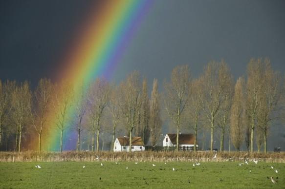 Regenboog boven de polders.